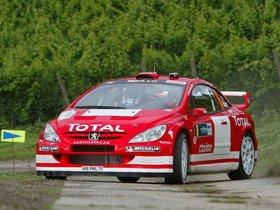 Ver foto 25 de Peugeot 307 CC WRC 2004