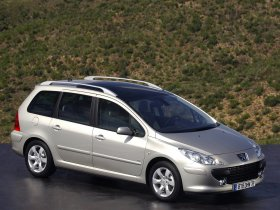 Ver foto 3 de Peugeot 307 SW Facelift 2005