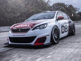 Ver foto 7 de Peugeot 308 Racing Cup 2015