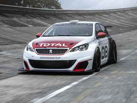 Ver foto 5 de Peugeot 308 Racing Cup 2015