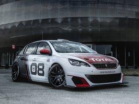 Ver foto 2 de Peugeot 308 Racing Cup 2015