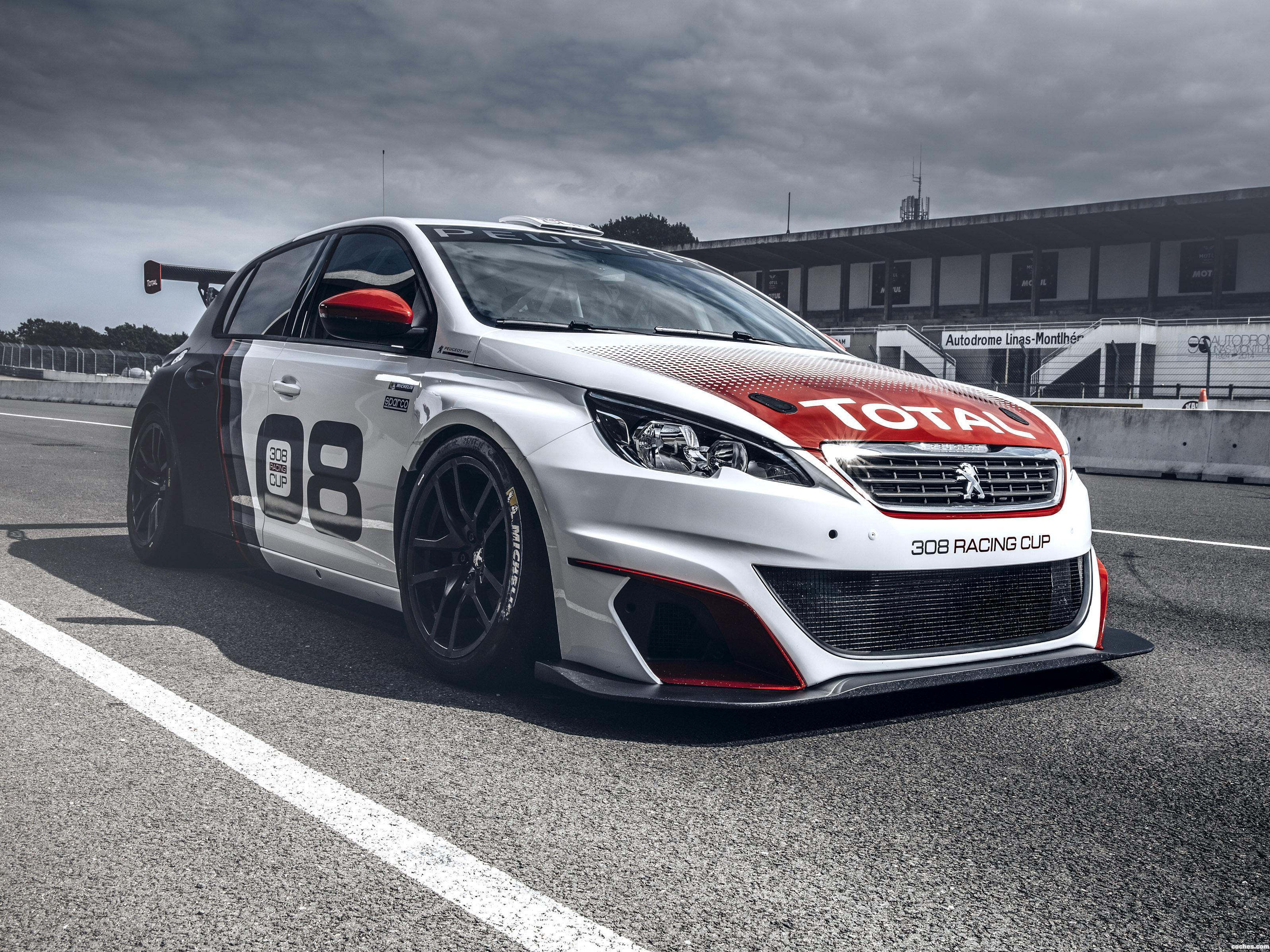 Foto 0 de Peugeot 308 Racing Cup 2015