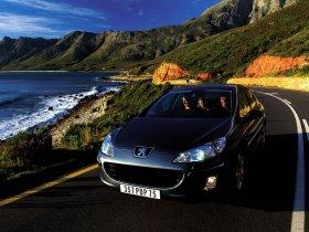 Ver foto 37 de Peugeot 407 2007