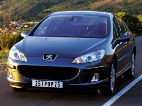 Ver foto 35 de Peugeot 407 2007