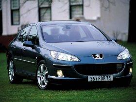 Ver foto 25 de Peugeot 407 2007