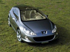 Ver foto 25 de Peugeot 407 Elixir Concept 2003