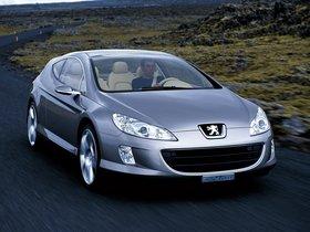 Ver foto 10 de Peugeot 407 Elixir Concept 2003