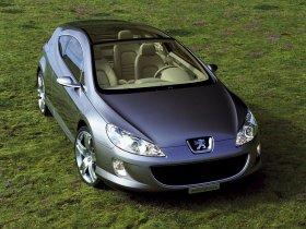 Ver foto 9 de Peugeot 407 Elixir Concept 2003