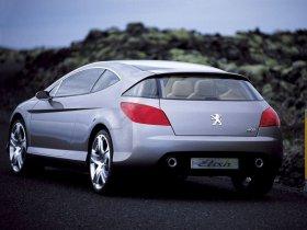 Ver foto 8 de Peugeot 407 Elixir Concept 2003