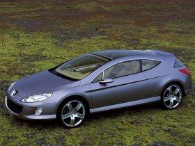 Ver foto 5 de Peugeot 407 Elixir Concept 2003