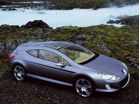 Ver foto 4 de Peugeot 407 Elixir Concept 2003