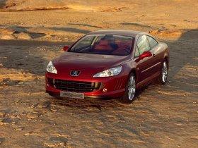 Ver foto 12 de Peugeot 407 Prologue 2005