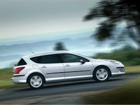 Ver foto 11 de Peugeot 407 SW 2004