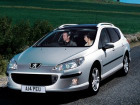 Ver foto 7 de Peugeot 407 SW 2004