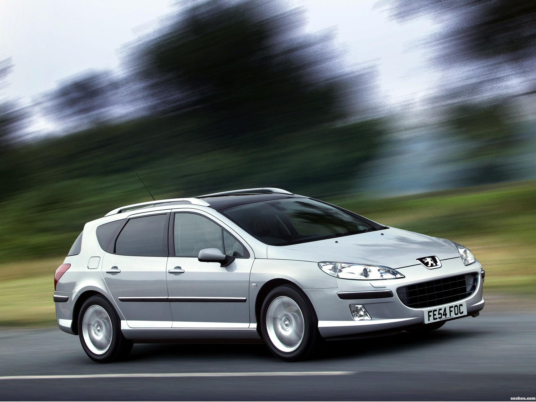 Foto 0 de Peugeot 407 SW 2004