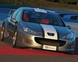 Ver foto 2 de Peugeot 407 Silhouette Concept 2004
