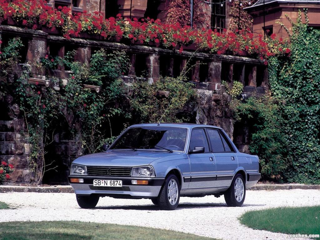 Foto 0 de Peugeot 505 1986