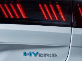 Ver foto 4 de Peugeot 508 SW Hybrid 2019