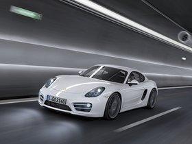 Ver foto 9 de Porsche Cayman 2013