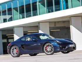 Ver foto 22 de Porsche Cayman 2013