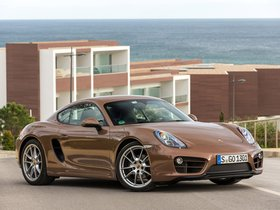 Ver foto 19 de Porsche Cayman 2013