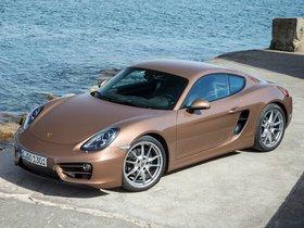 Ver foto 18 de Porsche Cayman 2013