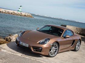 Ver foto 17 de Porsche Cayman 2013