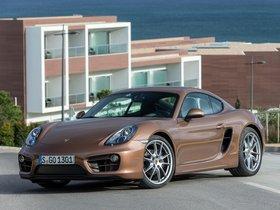 Ver foto 16 de Porsche Cayman 2013