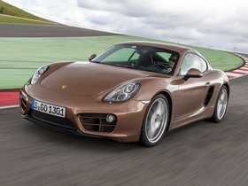 Ver foto 14 de Porsche Cayman 2013