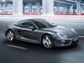 Ver foto 5 de Porsche Cayman 2013