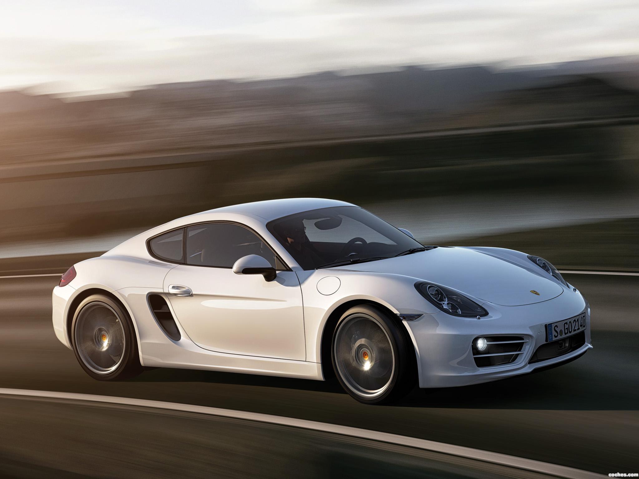 Foto 0 de Porsche Cayman 2013