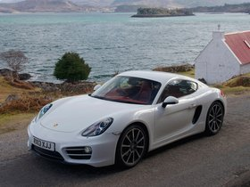 Ver foto 6 de Porsche Cayman 981C UK 2013