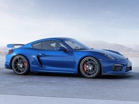 Ver foto 9 de Porsche Cayman GT4 981C 2015