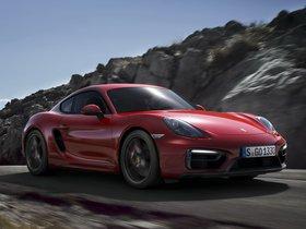 Ver foto 4 de Porsche Cayman GTS 981C 2014