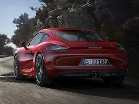 Ver foto 3 de Porsche Cayman GTS 981C 2014