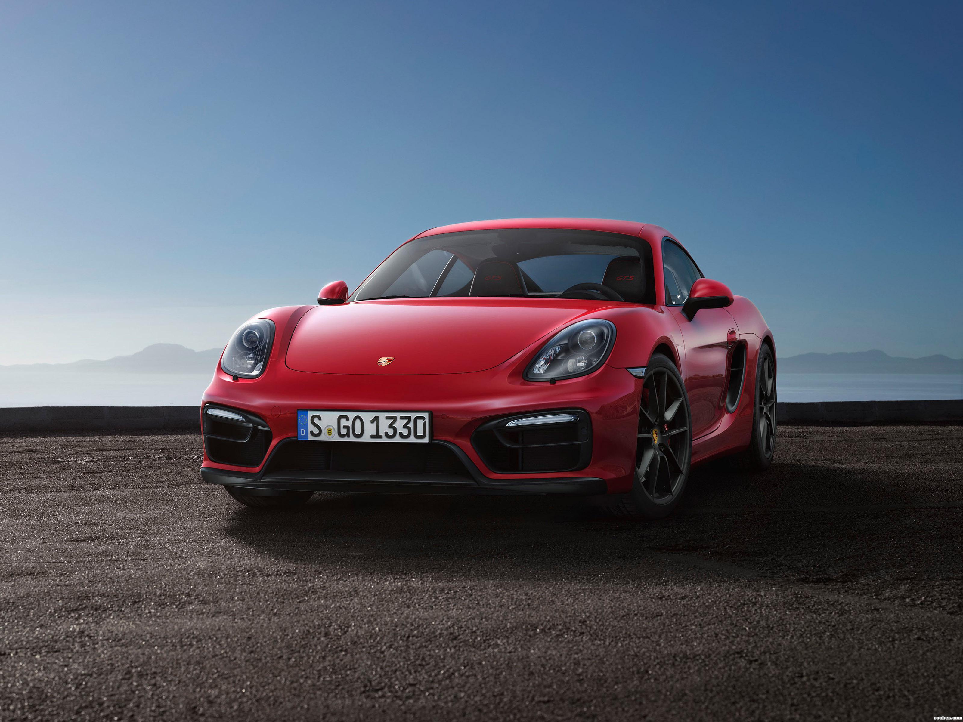 Foto 0 de Porsche Cayman GTS 981C 2014