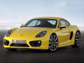 Ver foto 7 de Porsche Cayman S 2013