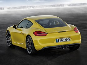 Ver foto 3 de Porsche Cayman S 2013