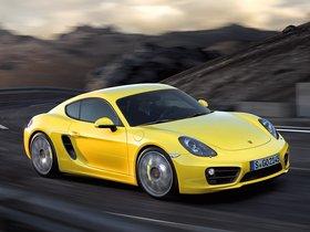 Ver foto 2 de Porsche Cayman S 2013