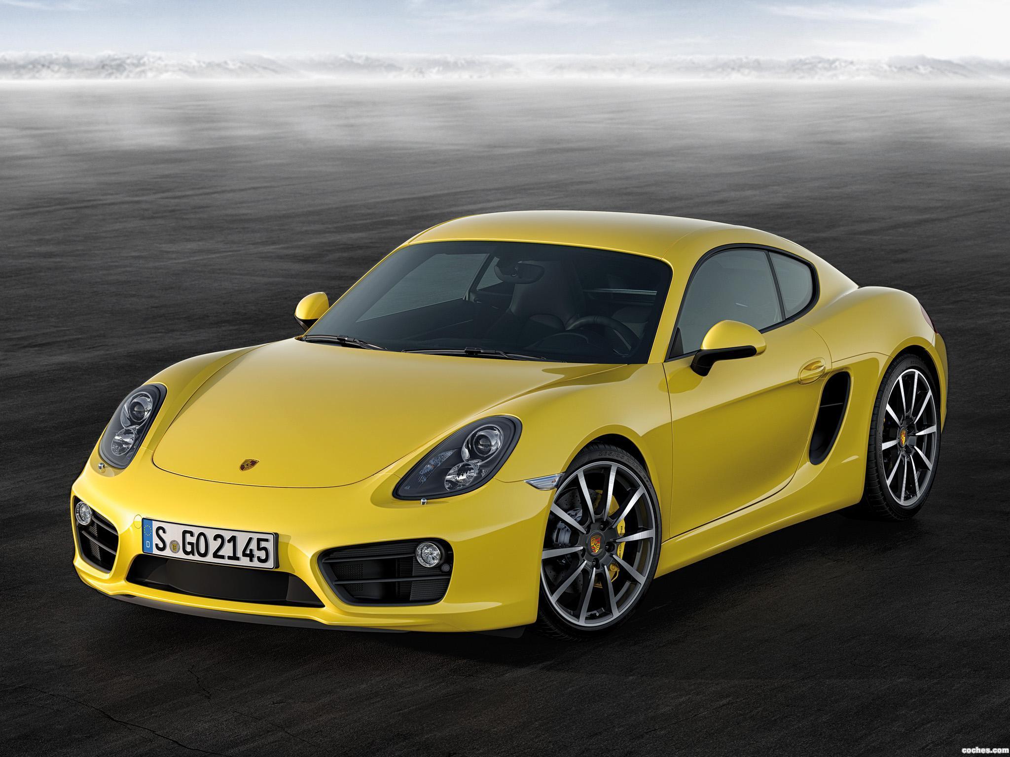 Foto 0 de Porsche Cayman S 2013