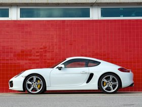 Ver foto 10 de Porsche Cayman S 981C UK 2013