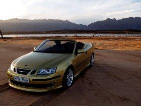 Ver foto 20 de Saab 9-3 Cabrio 2004