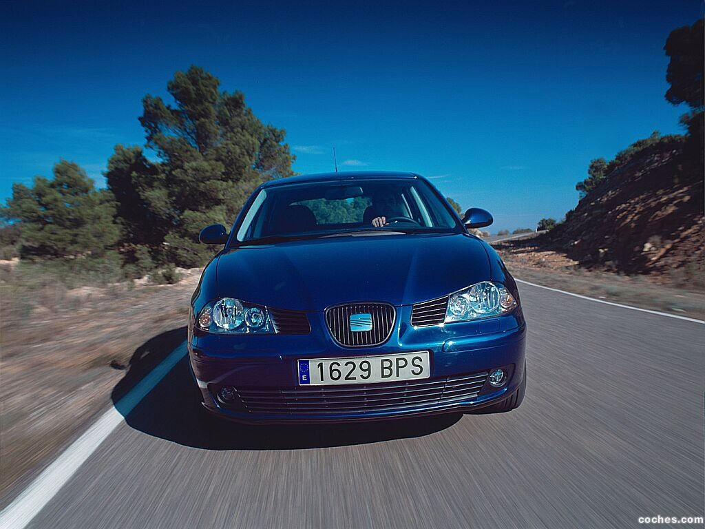 Foto 0 de Seat Ibiza 2002