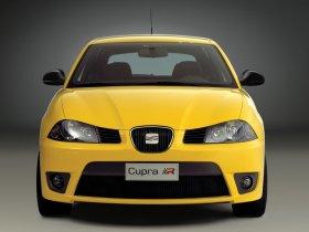 Ver foto 4 de Seat Ibiza Cupra 2004