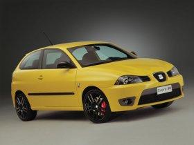 Ver foto 3 de Seat Ibiza Cupra 2004