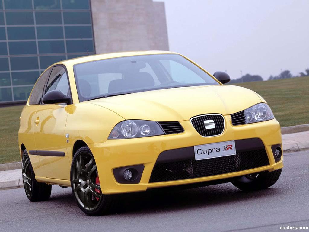 Foto 0 de Seat Ibiza Cupra 2004