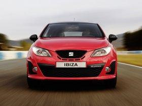 Ver foto 16 de Seat Ibiza Cupra 2008