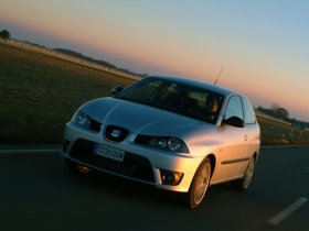 Ver foto 6 de Seat Ibiza Cupra Facelift 2006