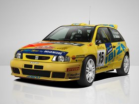 Fotos de Seat Ibiza Kit Car EVO 1996