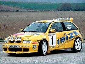 Ver foto 2 de Seat Ibiza Kit Car Evo 1995